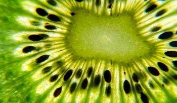 Kiwi Küchenrückwand